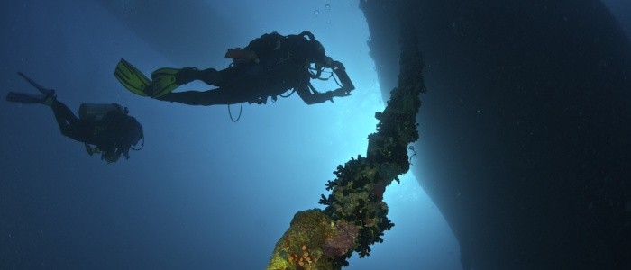 Featured image for Diving on HMS Manchester