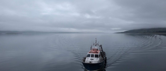 Featured image for Mull Dive Trip